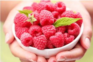 raspberry ketone max bauer