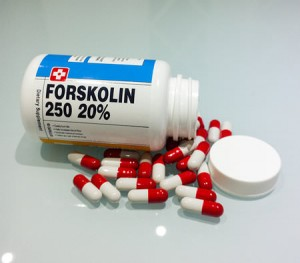 forskolin best price