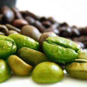 Chicchi di caffè verde e acido clorogenico