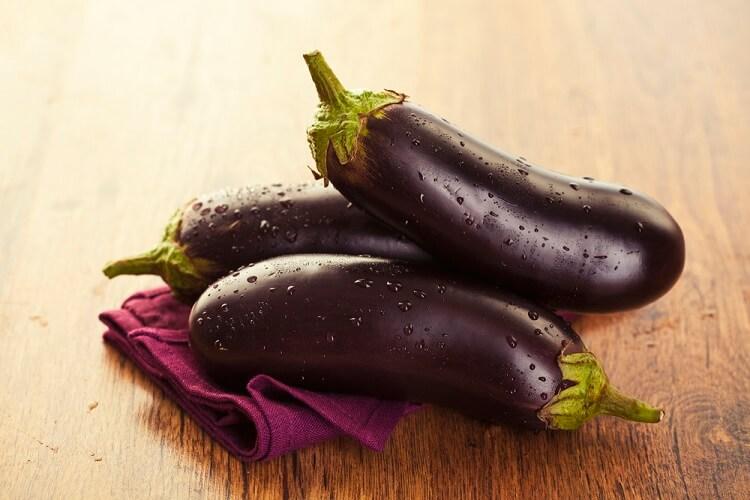 dieta pancreatite nella dogione